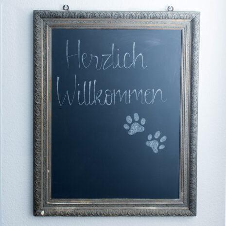 01-galerie-tierarzt-ruholl-herzlich-willkommen